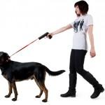 Craziest Designed Dog Leash Ever