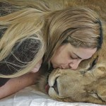 Social Good: Helping a Paralyzed Lion via Facebook