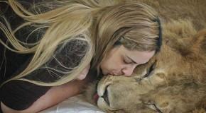 Social Good: Helping a Paralyzed Lion via Facebook