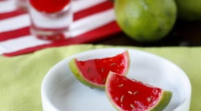 Party Favors – Watermelon Jello Shooters