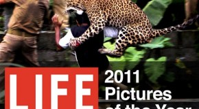 LIFE – 2011 Pictures of the Year [Gallery]