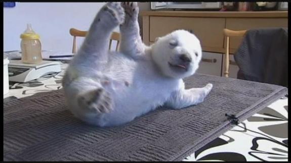 Siku Baby Polar Bear (5)